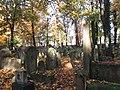בית הקברות היהודי בקרקוב - קברים (6).jpg