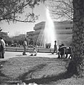בכיכר דיזנגוף בתל-אביב-JNF013377.jpeg