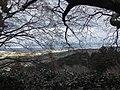 善峯寺から - panoramio.jpg