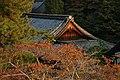 日本京都寺院32.jpg