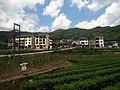 洲头村 - Zhoutou Village - 2015.07 - panoramio.jpg