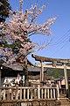 熊野神社 (岐阜県加茂郡八百津町) - panoramio.jpg