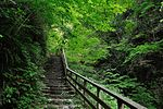 白岩の滝 - panoramio (4).jpg