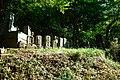 綱島公園 - panoramio (5).jpg