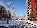 雪后北师大 - Snowy Blankets in BNU - 2013.03 - panoramio.jpg