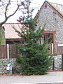 -2019-11-21 Village Christmas Tree, Mundesley.JPG