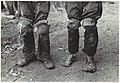 -Cotton Pickers with Knee Pads, Lehi, Arkansas- MET DP109609.jpg