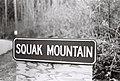03-05 - Squak Mountain (2435601932).jpg