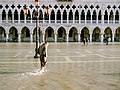 05L7360001-Biblioteca nazionale Marciana-Venezia.jpg