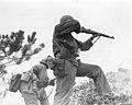 111-SC-337972 - One rifleman reloads, and another fires in the 96th Infantry Division's advance to capture Big Apple Hill, scene of intense fighting on Okinawa.jpg