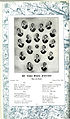 1911 Georgia Tech Blueprint Page 062.jpg