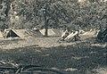 1940 Fin Mai début Juin - Camp de prisonniers d'ysendyk - Pays-Bas (4).jpg