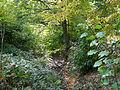 200910071234MEZ ORL 47 Hainhaus Umwehrung 06.jpg