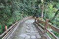 2010 07 17200 5825 Beinan Township, Taiwan, Jhihben National Forest Recreation Area, Walking paths.JPG