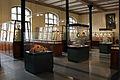2013-03 Museum für Naturkunde Mineraliensammlung anagoria.JPG