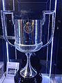 2013-14 Copa del Rey.jpg