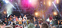 2013 Woodstock 132 Cała Góra Barwinków.jpg