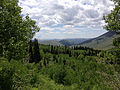 2014-06-24 12 36 02 View south across Copper Basin from Elko County Route 748 (Charleston-Jarbidge Road).JPG