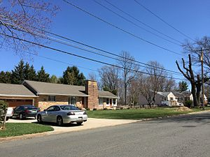 Altura, New Jersey - Homes along Decou Avenue in the Altura section of Ewing, New Jersey