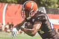 2016 Cleveland Browns Training Camp (28407756210).jpg