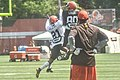2016 Cleveland Browns Training Camp (28614311381).jpg