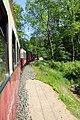 2017-05-25 Bäderbahn Molli 05.jpg