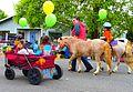 2017 Linn County Lamb & Wool Fair Parade in Scio, Oregon (34938541855).jpg