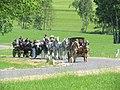 21te Rammenauer Schlossrundfahrt der Pferdegespanne (084).jpg