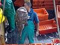 30052015589 aboard trawler African Queen.jpg