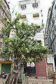 43 Strand Road - Kolkata 2016-10-11 0580.JPG