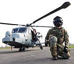 AAC Wildcat Mk1 MOD 45162234.jpg
