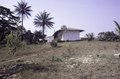 ASC Leiden - F. van der Kraaij Collection - 05 - 077 - Modern houses with corrugated iron roofs. Palm trees and agaves - Voinjama, Lofa county, Liberia, 1976.tif