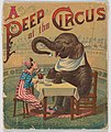 A Peep at the Circus MET DP860283.jpg