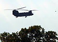 A U.S. Army CH-47 Chinook helicopter flies over Camp Atterbury, Ind., during exercise Vibrant Response 13 July 31, 2012 120731-F-HS649-004.jpg