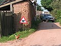 A free-range chicken at Perry Farm - geograph.org.uk - 974076.jpg