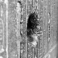 A hole in a sarcophagus (6947674316).jpg