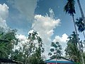 A natural scenery.jpg