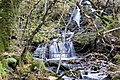 A waterfall - geograph.org.uk - 1563156.jpg