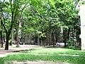 A yard at Nicolae Dimo st, looking NE - panoramio.jpg