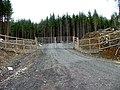 Access to the forest - geograph.org.uk - 1768410.jpg