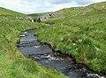 Afon Camddwr east of the Cwm Berwyn Plantation, Ceredigion - geograph.org.uk - 905593.jpg