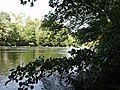 Afon Dyfdwy at Bwlch - geograph.org.uk - 237112.jpg