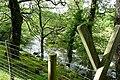 Afon Llugwy - geograph.org.uk - 1437195.jpg