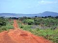 African Road (183462250).jpg
