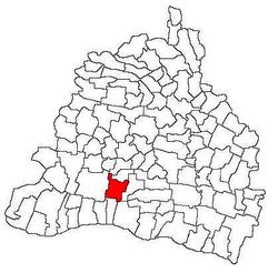 Vị trí của Afumati