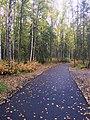 Alaska Botanical Garden ENBLA06.jpg