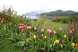 Shrine of St. Therese, Juneau - The grounds