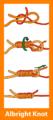 Albright knot diagram retouched.png