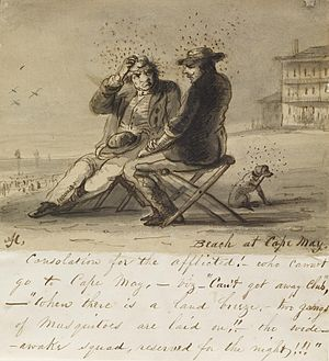 Cape May Historic District - Cartoon, c. 1840, about Cape May vacationing by Alfred Jacob Miller.
