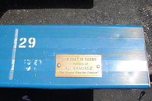 Bleacher Creatures - The seat with a plaque dedicated to Ali Ramirez in old Yankee Stadium: Section 39, row A, seat 29